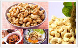 The Cashew Export Promotion Council Of India|cashew supplier in